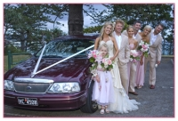 whole wedding party by the wedding car