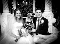 Bride and Groom with their dog as ring bearer